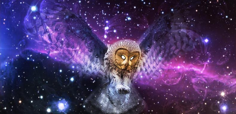 Cosmic Consciousness — Quantum Physics' Missing Link