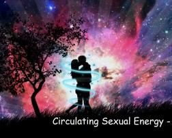 Circulating Sexual Energy