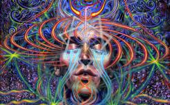 Involution - The Witness - The Art of Adam Scott Miller