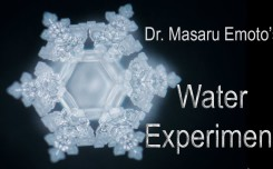 thoughts masaru emoto water