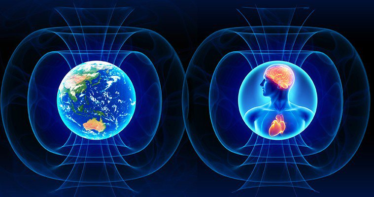 an overview of the way that electro magnetic fields affect human life Electromagnetic fields and the heart: basic science and clinical use  nontoxic way is always a goal magnetic fields have been found to significantly affect .