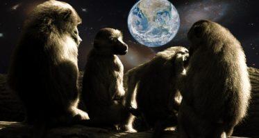 Hundredth Monkey Effect