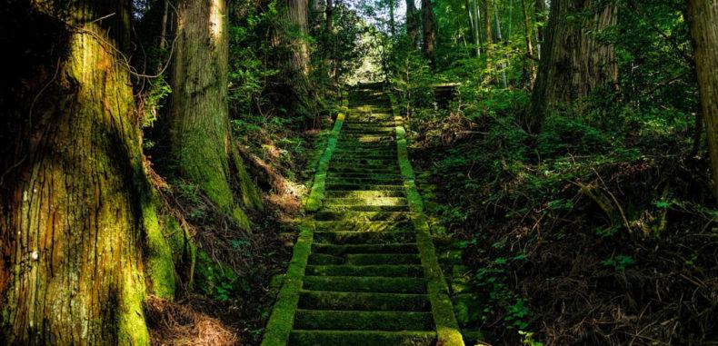Mindfulness – Meditation or Presence?