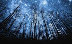 cosmic call
