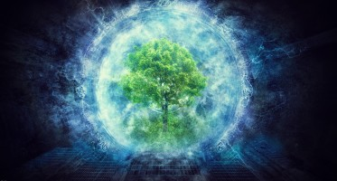 Consciousness, Human Brain and the Soul