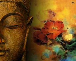 empath buddha wallpaper