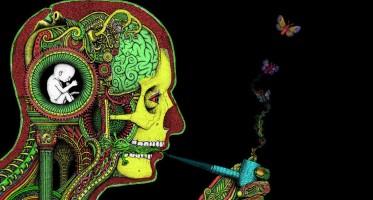 cannabis marijuana art
