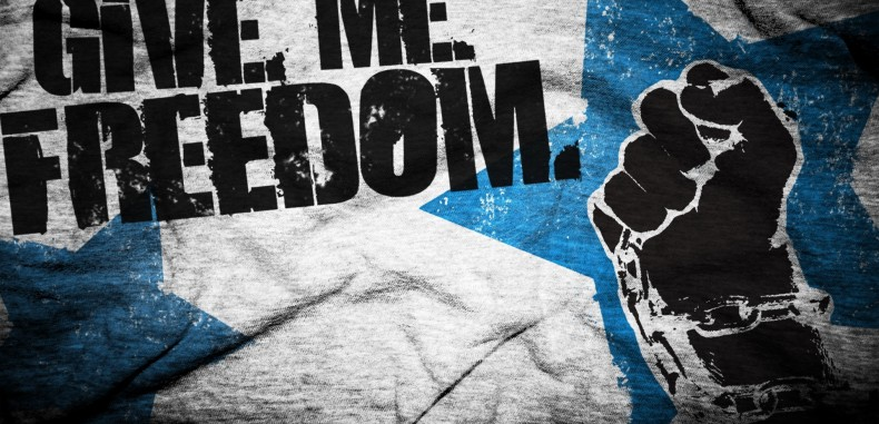 Freedom: Anarchy, Ecstasy Or Licentiousness?