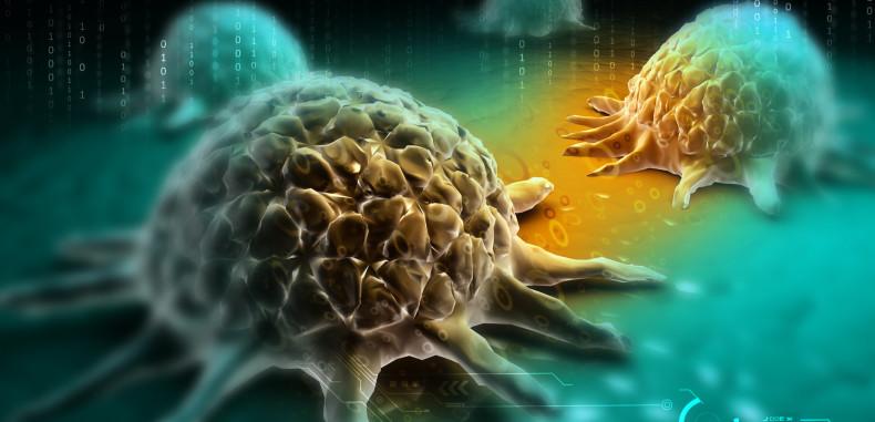 Cancer Prevention — Vitamin B17, Nutrition, Exercise & Chronic Stress