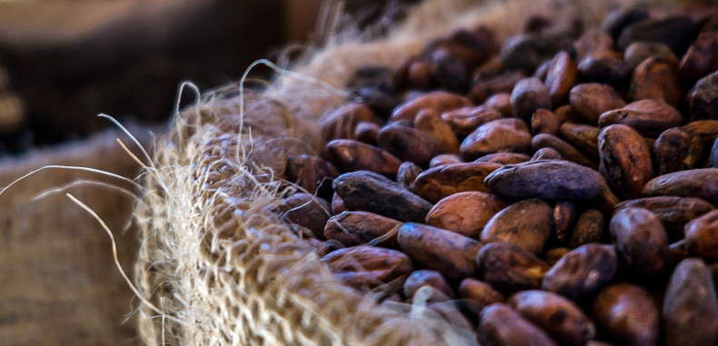 Fight Flu With Cacao — The Antioxidant-Rich Superfood