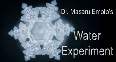 thoughts masaru emoto water