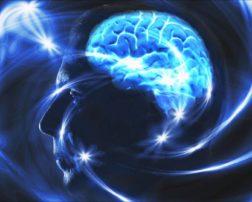 programming mind