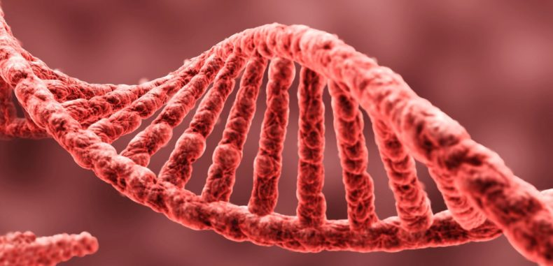Scientists Have Found That Memories May Be Passed Down Through Generations In Our DNA