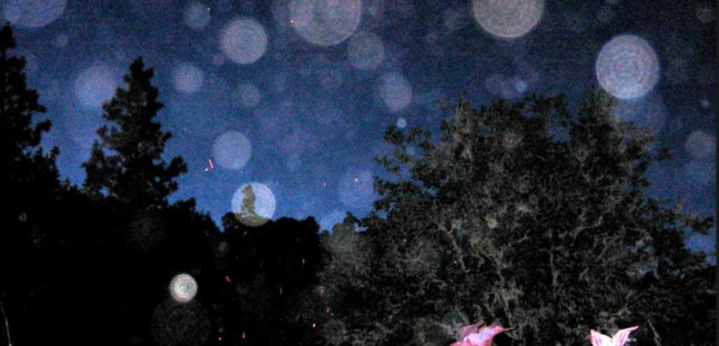How To Spot Spirit Orbs In Photos