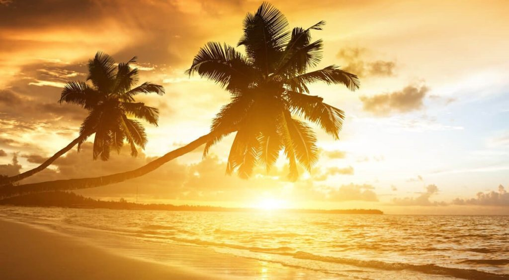 The Spiritual Awakening Sunset