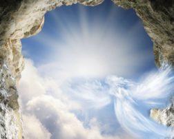Angel Teachings