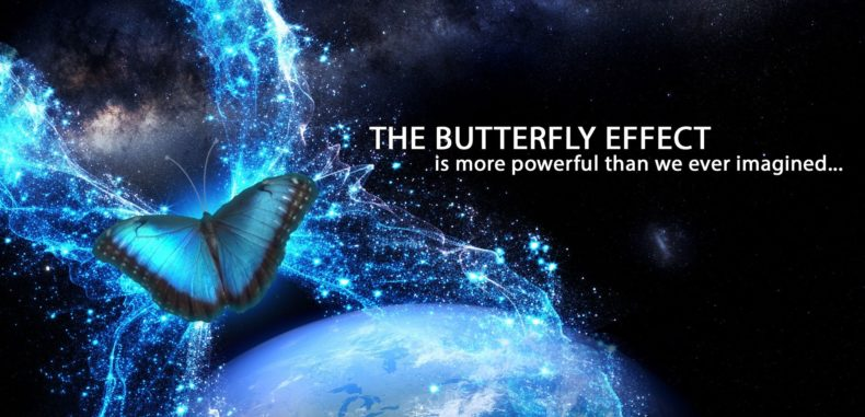 The Butterfly Effect and the Environment: How Tiny Actions Can Save the World